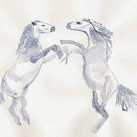 Guest Blog Post - Horseplay by Angie Kidd
