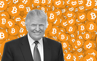 A Landslide Victory For Trump, Or Bitcoin?
