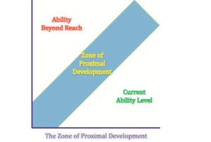 Zone of Proxmial development