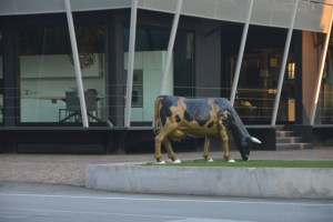 Porcelain cow placidly grazing on a street corner