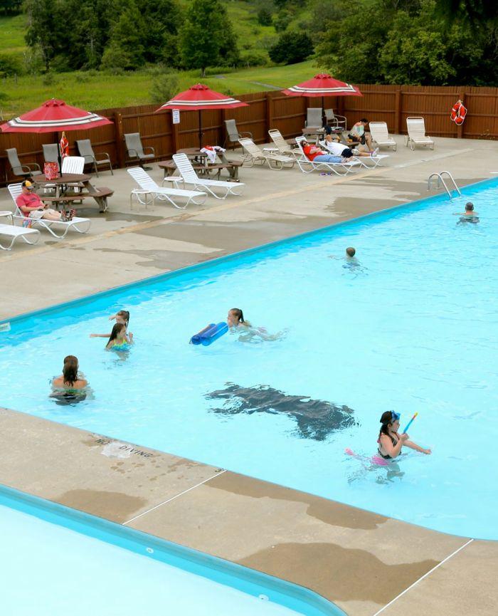 black-bear-summer-pool-people-2