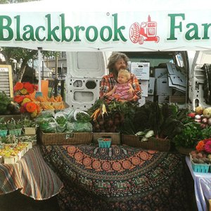 Blackbrook Farm sells organic vegetables at Farmers Markets