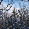CEBO(セボ)のマウンテンブーツで山に分け入る 雪山篇