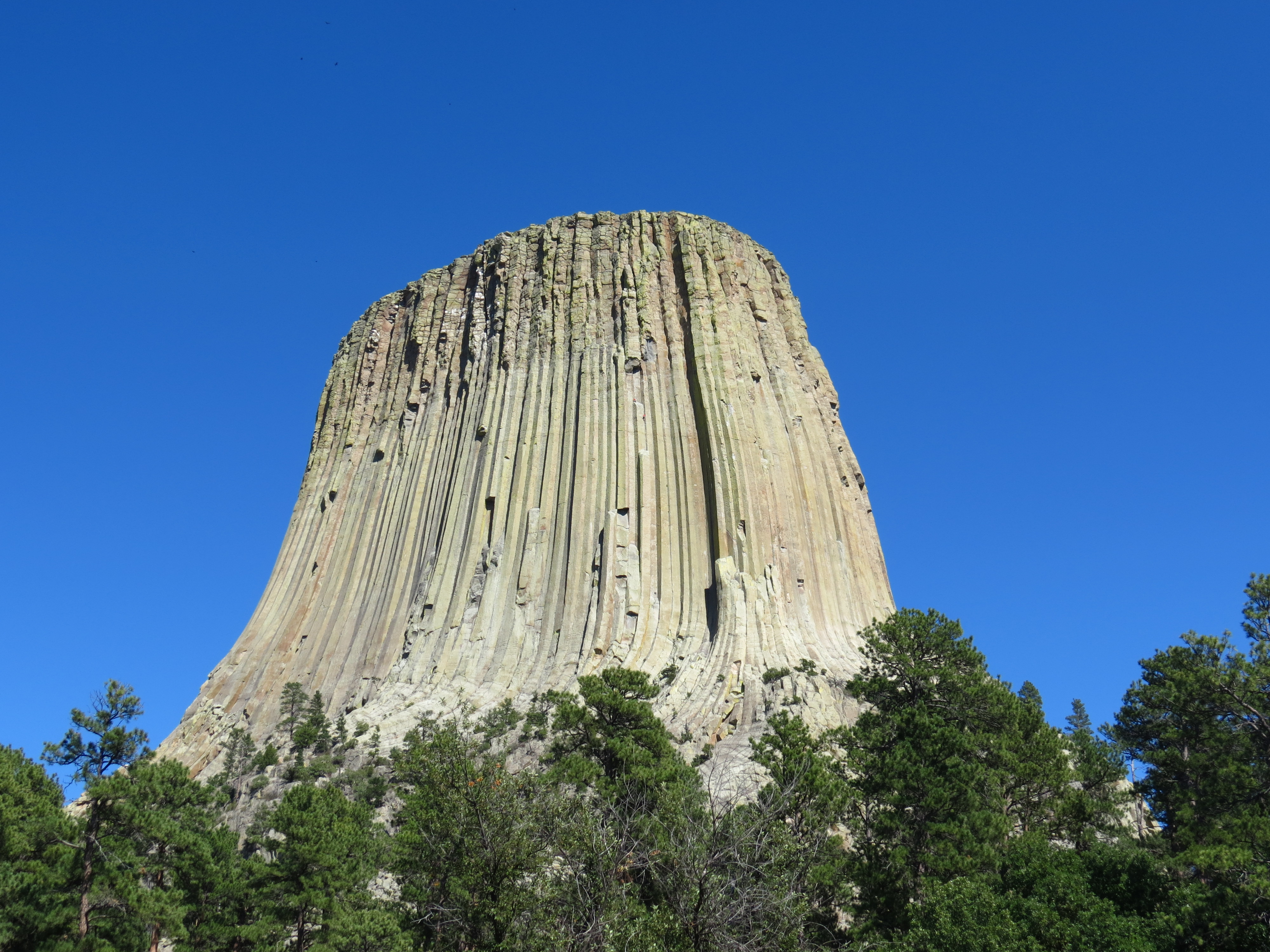 Devils Tower Wy >> Devils Tower - Black Hills The Hike - Black HillsBlack Hills The Hike