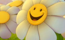 camomile_smile_flower_moods_ultra_3840x2160_hd-wallpaper-3853