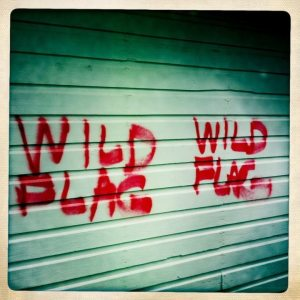 wild-flag
