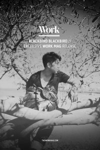 Blackbird Blackbird - the Work Mag