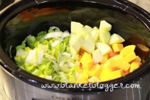 butternut squash (10)