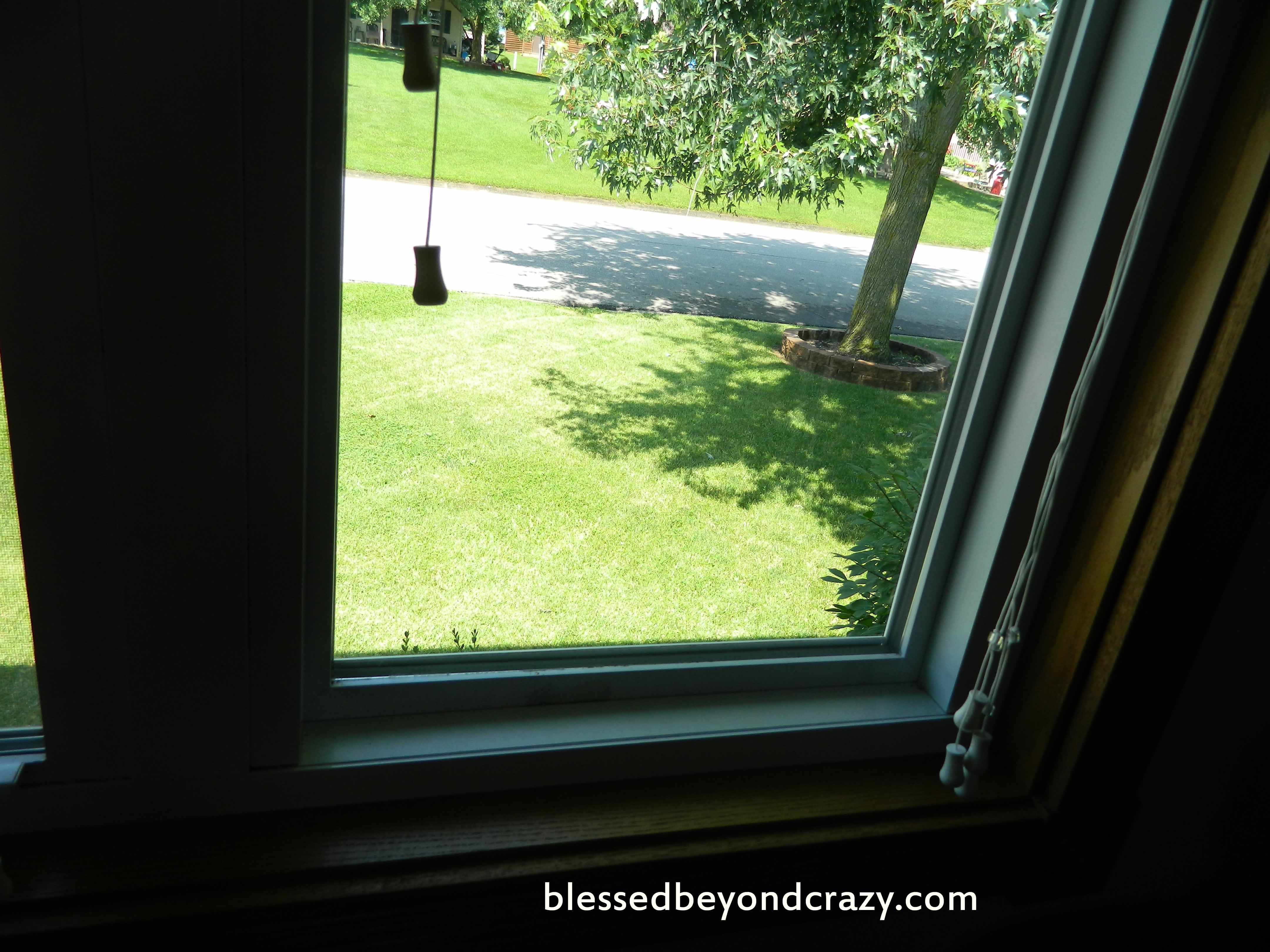 Cleaning hack how to have spotless windows for months for How to clean windows