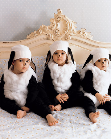 Halloween Sheep Costumes