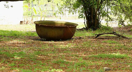 sugar cane vat image from http://www.whitneyplantation.com/photo-gallery.html