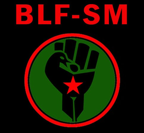 The Black First Land First Student Movement (BLF-SM) Maintains The Call For Free Black Centered Socialist Education and Rejects the Fees Commission.