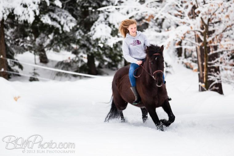 Kierstead-Horses-4749_PROOF