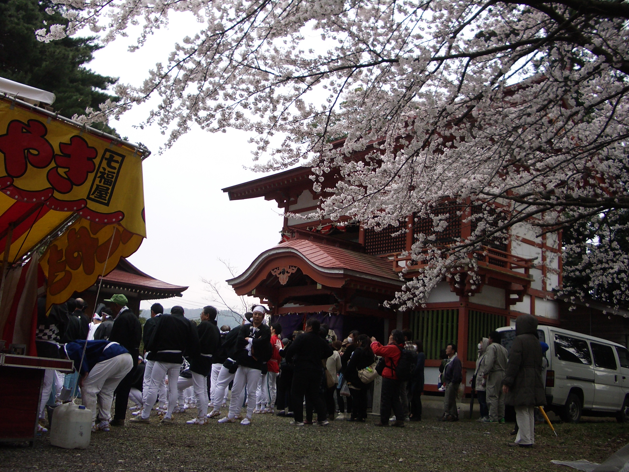 Shrine and Cherry Blossoms