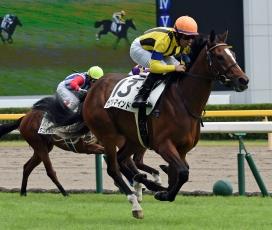 【競馬】 〇〇とはなんだったのか…オブザイヤー2016