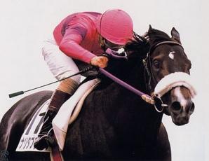 【競馬】 三冠馬の「別格っぷり」ってすごくね?
