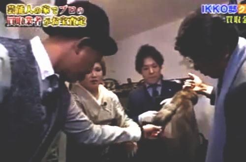 木梨憲武がIKKO所有の2500万円もする超高級毛皮コートの毛をむしる