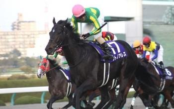 【競馬】 サトノアレス、次走米GIベルモントダービー もしくは…