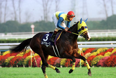 【競馬】 史上最高牝馬・エアグルーヴについて語ろう