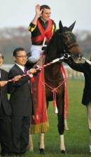 【悲報】 ジェンティルドンナ、有馬記念回避か 吉田代表が示唆