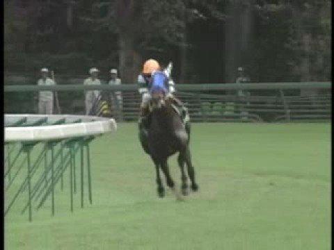 【競馬】 浜中騎手、ツインターボに騎乗し香港の国際騎手招待に出場!2