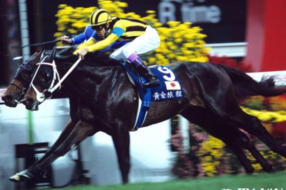 【競馬】 競馬の歴史を変えたステイゴールドの香港GI制覇