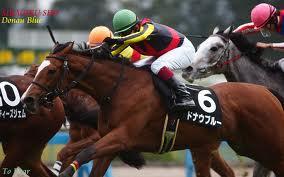 【競馬予想】2013年2月3日 東京新聞杯 ◎ドナウブルー