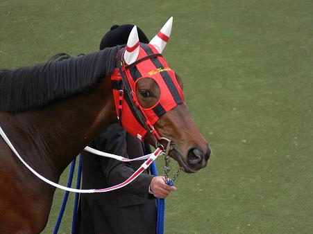 ウインバリアシオンって超名馬だったんじゃね…