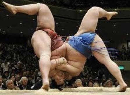 相撲のネット配信の値段設定wwwwww
