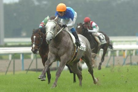 【競馬】 トリップ、左前浅屈腱不全断裂を発症…