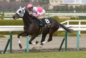 【競馬】 バンドワゴン、2年ぶりの復帰戦はダート1800m 鞍上は秋山騎手