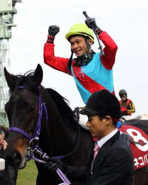 【競馬】 爪の不安で放牧していたネコパンチが帰厩 1/20AJCCで復帰へ 鞍上は江田照