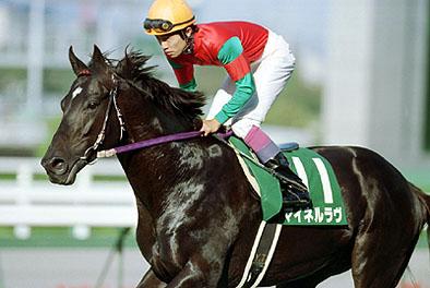 【競馬】 マイネル&マイネで各路線最強馬を挙げてけ