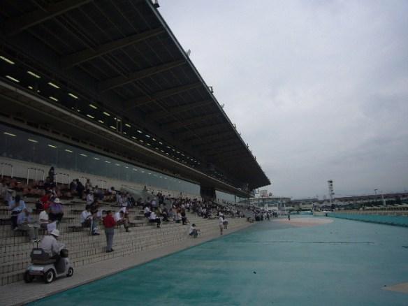 【競馬】 園田競馬で今年最高の3連単487万馬券!