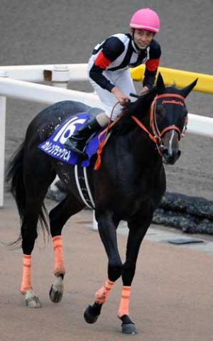 【競馬】 オルフェ達が「現役4強馬」なら、「現役4弱馬」は誰になるの?