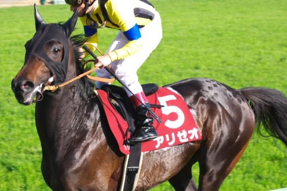 【競馬】 アリゼオ引退 もちろん種馬なれず