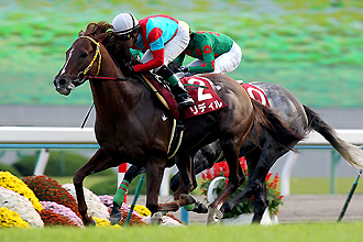 【競馬】 重賞2勝リディルが競走馬登録抹消、福島・南相馬で乗馬へ 昨年のスワンSと09年デイリー杯2歳Sに優勝