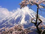 今日本国内に日本発祥のものってなにがあるんだよ!