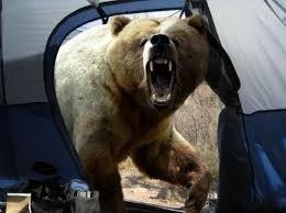熊がテントに入って来たとするじゃん?