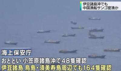 中国漁船によるサンゴ密漁、新たに伊豆諸島の周辺海域でも164隻が確認 … 中には罰金を払いながら密漁も。罰則が軽く今年の拿捕は1隻のみ。法令に基づき洋上で釈放している現状