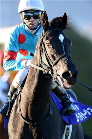 【競馬】 ローブティサージュが引退 競走中止後、関係者の協議の結果