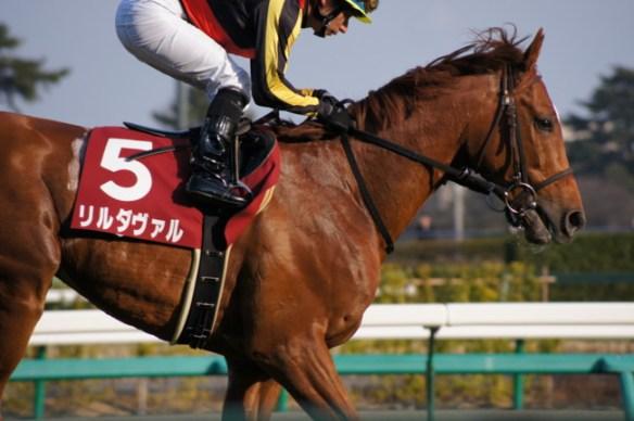 【競馬】 リルダヴァル・マスクトヒーローが現役引退