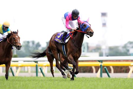 【競馬】 メイショウマンボ、3月に転厩