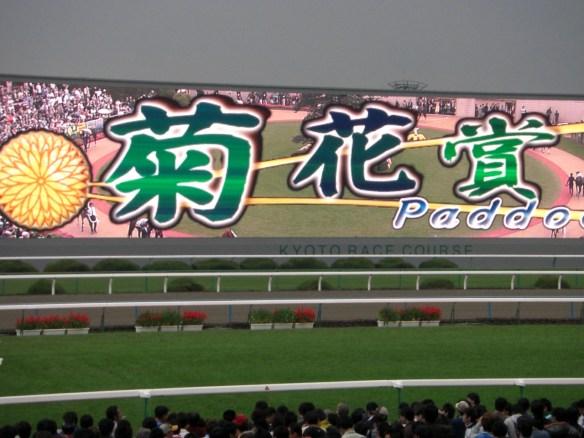 【競馬】 んで、今年の菊花賞は何が勝つの?