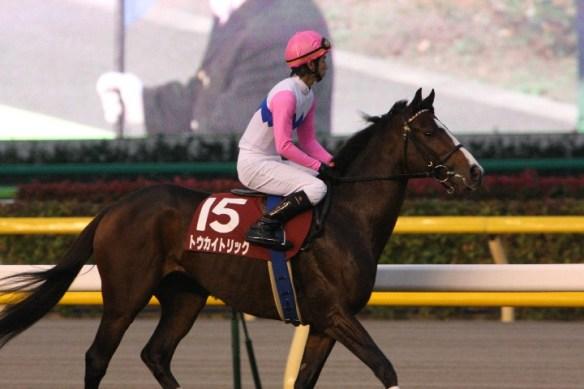 【競馬】 トウカイトリックが死去… けい養中に重度の骨折