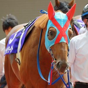 【競馬】 ヒットザターゲット、大賞典4冠へ 武豊とのコンビで阪神大賞典出走