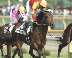 【競馬】 フサイチコンコルドの代表産駒を1頭選ぶなら?