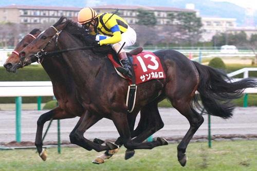 阪神カップを短距離馬のグランプリレースに