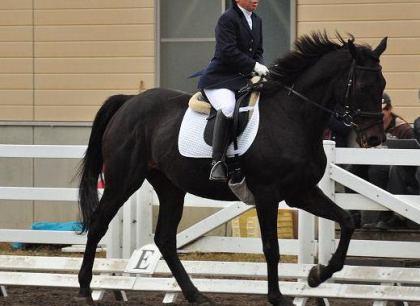 乗馬経験10年以上の女性(61)、馬に蹴られて死亡 … 一頭の馬が暴れ出し、なだめようとし近づく - 長野・上田