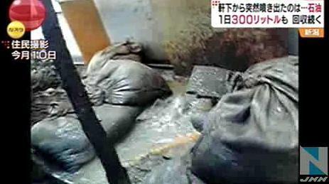 """住宅の軒下から""""石油""""が噴き出す。多い日には一日300リットルを超える … ヒャッハー大金持ちだー → 不純物が多くて使い物にならず。手作業で取り除く作業に追われる - 新潟"""